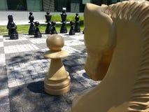 ` Di scacchi del ` Immagine Stock Libera da Diritti