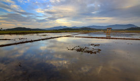Di scena interno rurale Borneo in profondità Fotografia Stock