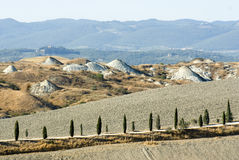 Di Siena van Terra Stock Afbeeldingen