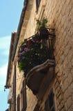 Di un balcone coperto di fiore a Venezia Immagini Stock