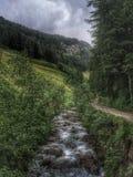 Di Val Gardena сельвы, Италия Стоковые Изображения