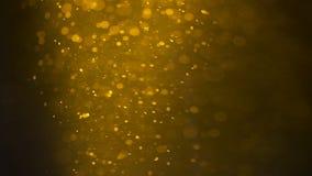 Di vetro in pieno delle bolle lente della birra Bolle e schiuma che si muovono velocemente in vetro di birra video d archivio