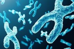 Di x-y-cromosomi come concetto per ricerca medica della genetica di terapia genica o di microbiologia di simbolo di biologia uman illustrazione vettoriale