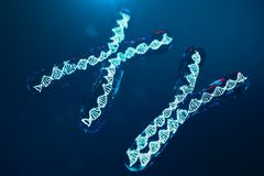 Di x-y-cromosomi con DNA che porta il codice genetico Concetto della genetica, concetto della medicina Futuro, mutazioni genetich illustrazione vettoriale