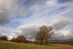 Dia Blustery Wales Foto de Stock