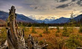 Dia bonito no Kootenay River Valley imagem de stock