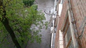 Dia chuvoso no verão na cidade imagem de stock royalty free