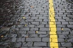 Dia chuvoso - ruas molhadas do outono imagem de stock