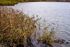 Dia da água do outono em outubro imagem de stock