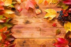 Dia da ação de graças, fundo das folhas de outono Foto de Stock Royalty Free