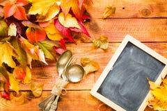 Dia da ação de graças, fundo das folhas de outono Imagens de Stock