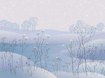 Dia da geada do inverno Foto de Stock Royalty Free