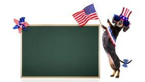 Dia da Independência 4o de cão de julho Imagens de Stock