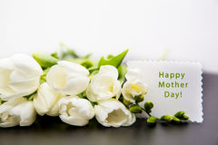 Dia da mãe Fotografia de Stock Royalty Free