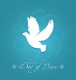 Dia da paz Foto de Stock
