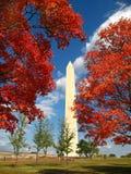 Dia da queda na C.C. de Washington Fotografia de Stock