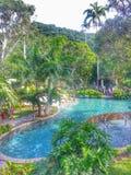 Dia da selva nas Caraíbas Fotos de Stock Royalty Free