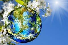 Dia da Terra Imagem de Stock Royalty Free