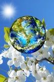 Dia da Terra. Estação Imagens de Stock Royalty Free