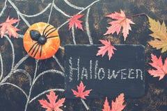 Dia das Bruxas, abóbora, aranha, folhas de bordo vermelhas, Web de aranha tiradas no giz em um fundo rústico escuro Quadro indica imagens de stock royalty free