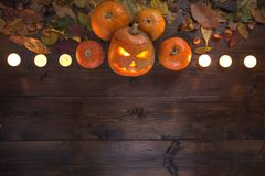 Dia das Bruxas feliz! O conceito do feriado, do outono vida ainda fotos de stock