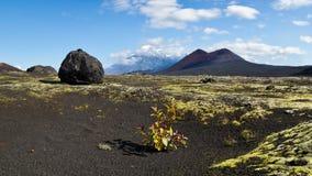 Dia das montanhas de Kamchatka e feelds verdes foto de stock royalty free
