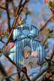 Dia das mulheres internacionais Número 8 na flor da maçã Imagens de Stock Royalty Free
