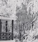 Dia de congelação Fotos de Stock