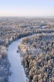 Dia de congelação na floresta Imagens de Stock