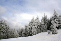Dia de inverno bonito Fotografia de Stock