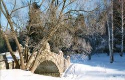 Dia de inverno ensolarado Fotos de Stock Royalty Free