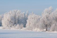 Dia de inverno frio fotografia de stock
