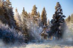 Dia de inverno frio Imagens de Stock Royalty Free