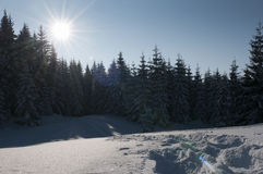 Dia de inverno maravilhoso nos alpes tiroleses Fotos de Stock Royalty Free