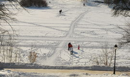 Dia de inverno no parque Tsaritsyno Fotos de Stock Royalty Free