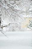 Dia de inverno perfeito Fotografia de Stock Royalty Free