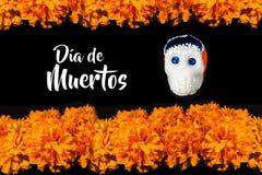 Dia De Los Muertos Flor de cempasuchil, Dag van de Doden die in México aanbieden stock foto's