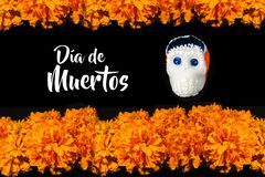 Dia De Los Muertos flor de cempasuchil, Day of the Dead offering in México stock photos