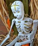 Dia de Los Muertos Skeleton fotografering för bildbyråer