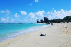 Dia de Maui Imagem de Stock