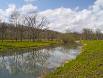 Dia de mola no banco do lago fotografia de stock royalty free