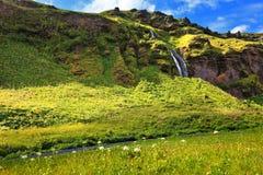 Dia de verão bonito em Islândia Foto de Stock