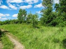 Dia de verão ensolarado da natureza com céu azul Foto de Stock Royalty Free