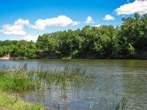 Dia de verão ensolarado da natureza com céu azul Fotos de Stock