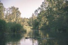 dia de verão na água no rio calmo fechado nas florestas com os penhascos do arenito e a madeira seca - olhar retro do filme do vi imagens de stock royalty free