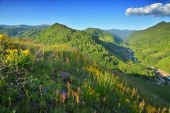 Dia de verão na vila da Transilvânia Imagens de Stock Royalty Free