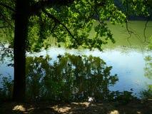 Dia de verão no lago foto de stock royalty free