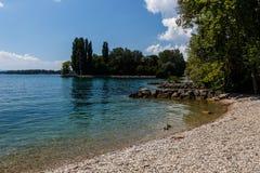 Dia de verão por um lago Imagens de Stock