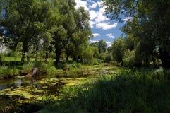 Dia de verão rural do rio Imagens de Stock Royalty Free
