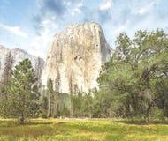 Dia de verão de Yosemite imagem de stock